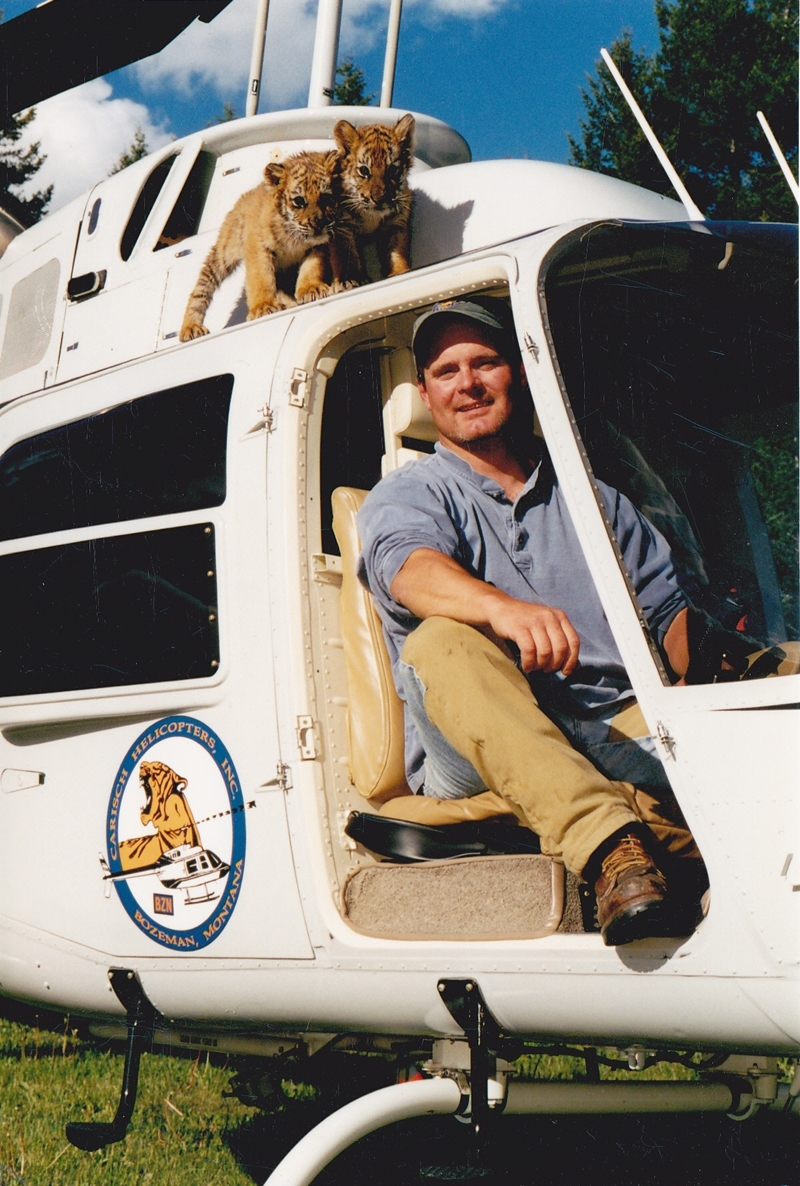 Helicopter with Tigers Montana